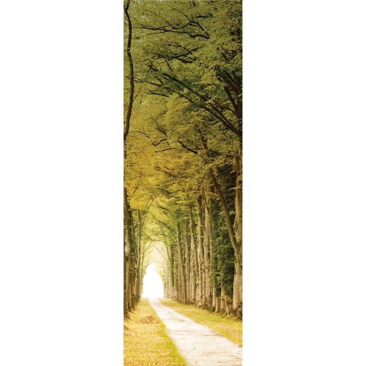 Δασικό μονοπάτι, Φύση, Κρεμάστρες & Καλόγεροι