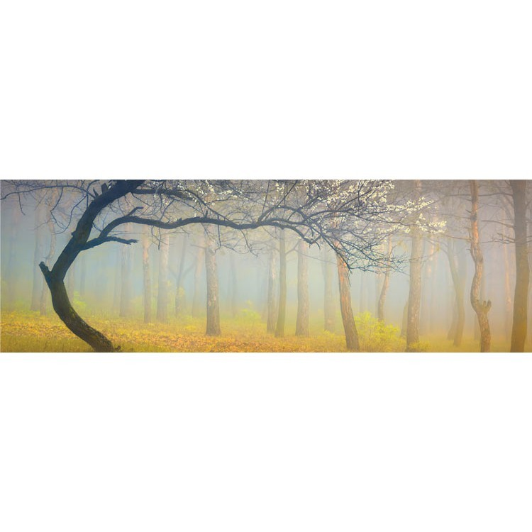 Δέντρο στην ομίχλη, Φύση, Κρεμάστρες & Καλόγεροι