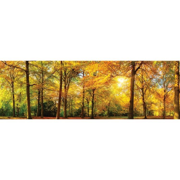 Δάσος, Φύση, Κρεμάστρες & Καλόγεροι