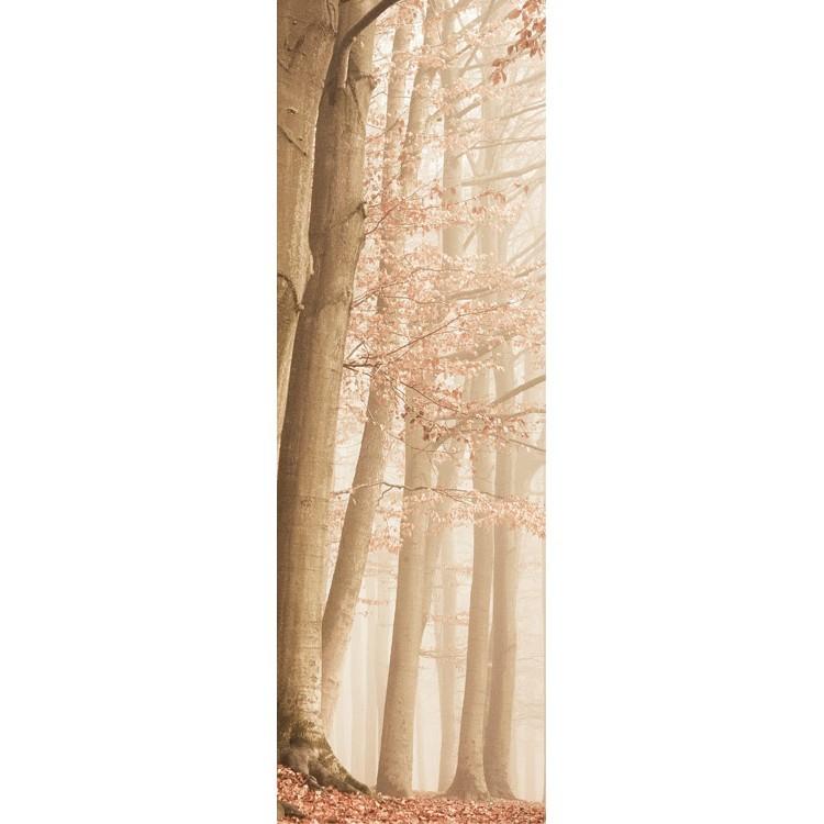 Ομίχλη στο δάσος, Vintage, Κρεμάστρες & Καλόγεροι