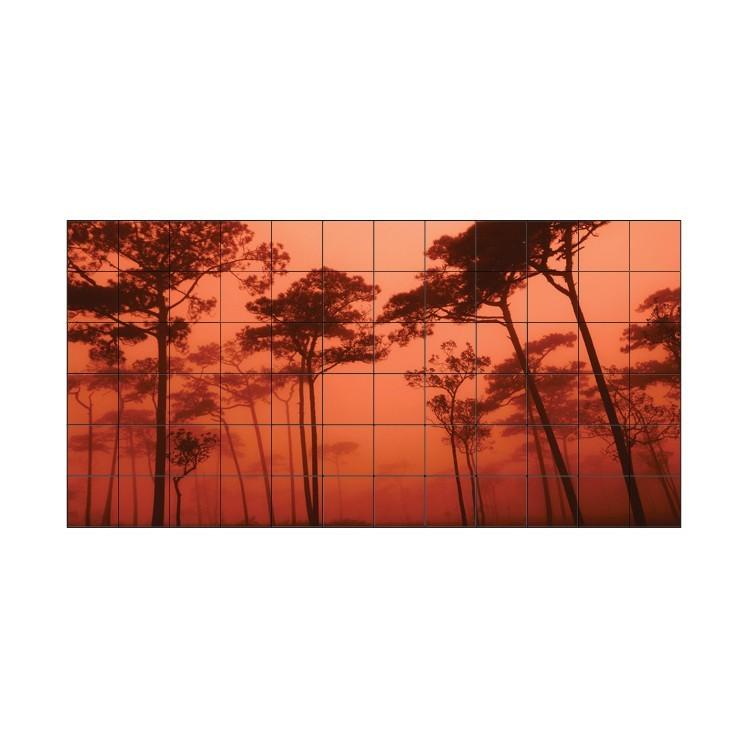 Ηλιοβασίλεμα στο δάσος, Φωτογραφίες, Αυτοκόλλητα πλακάκια