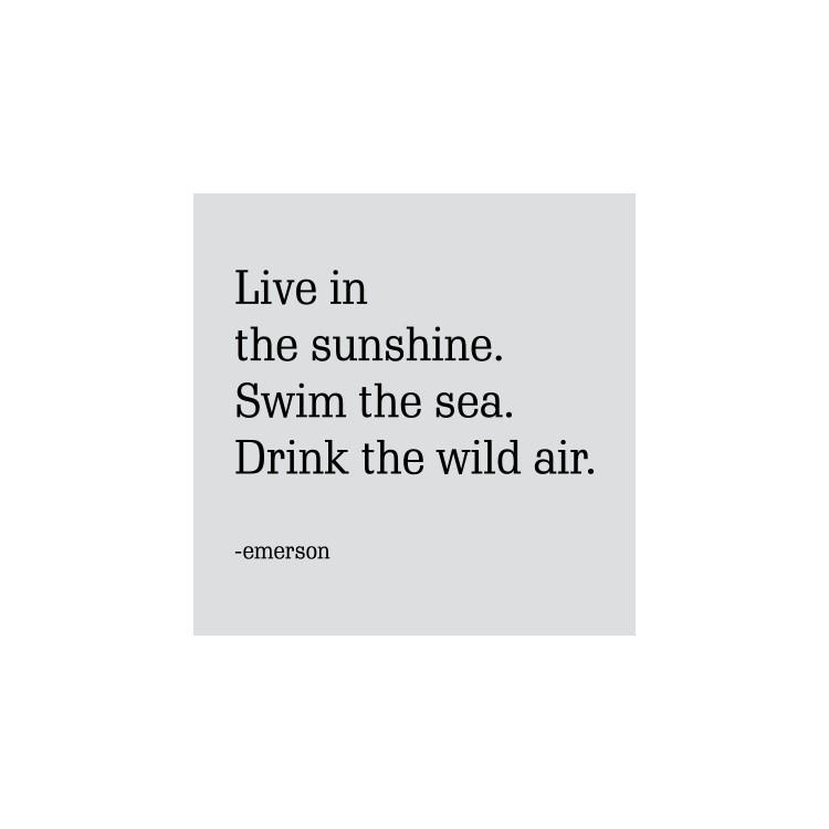 Live in...., Φράσεις, Ρολοκουρτίνες