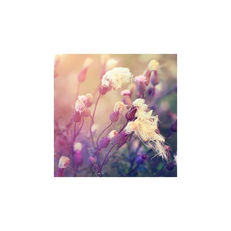 Λουλουδάτο φόντο, Φύση, Ρολοκουρτίνες