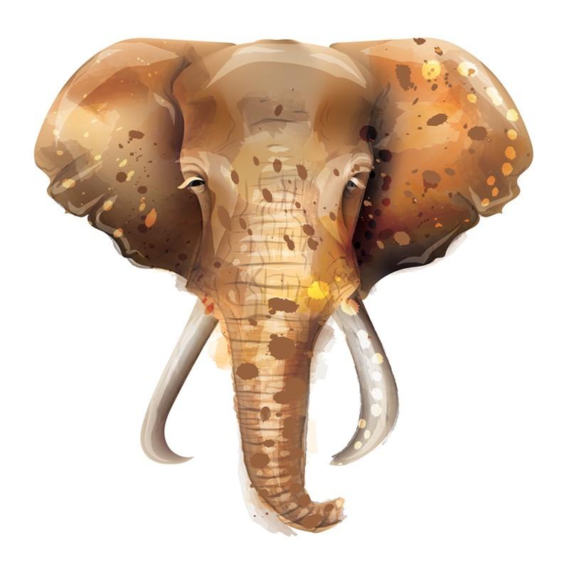 Πρόσωπο ελέφαντα, Ζώα, Αυτοκόλλητα τοίχου