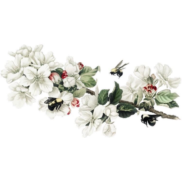 Αμυγδαλιά με έντομο, Δέντρα - Λουλούδια, Αυτοκόλλητα τοίχου