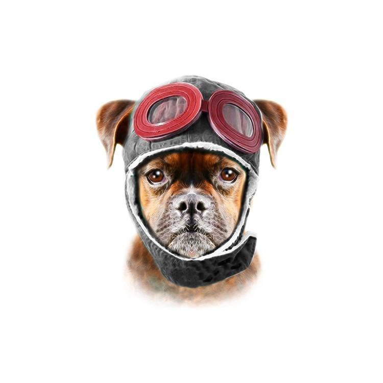 Σκύλος, Ζώα, Πίνακες σε καμβά