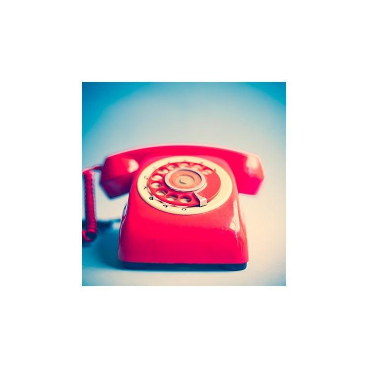 Ρετρό κόκκινο τηλέφωνο, Διάφορα, Multipanel