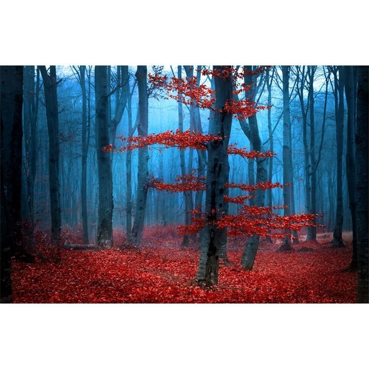 Κόκκινα Φύλλα, Φύση, Ταπετσαρίες Τοίχου