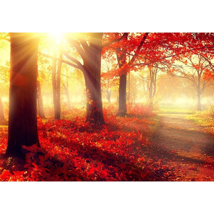 Κόκκινο Τοπίο, Φύση, Ταπετσαρίες Τοίχου