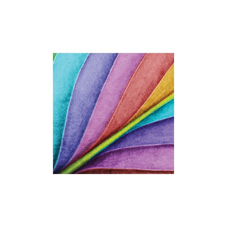 Πολύχρωμο φτερό, Φόντο, Παραβάν