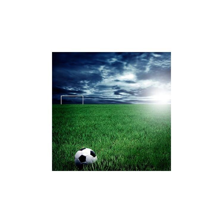 Ποδοσφαιρική μπάλα στο γήπεδο, Σπορ, Παραβάν