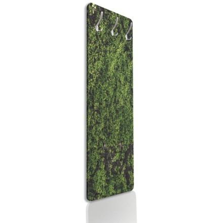 Πράσινη βρύα