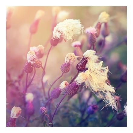 Λουλουδάτο φόντο