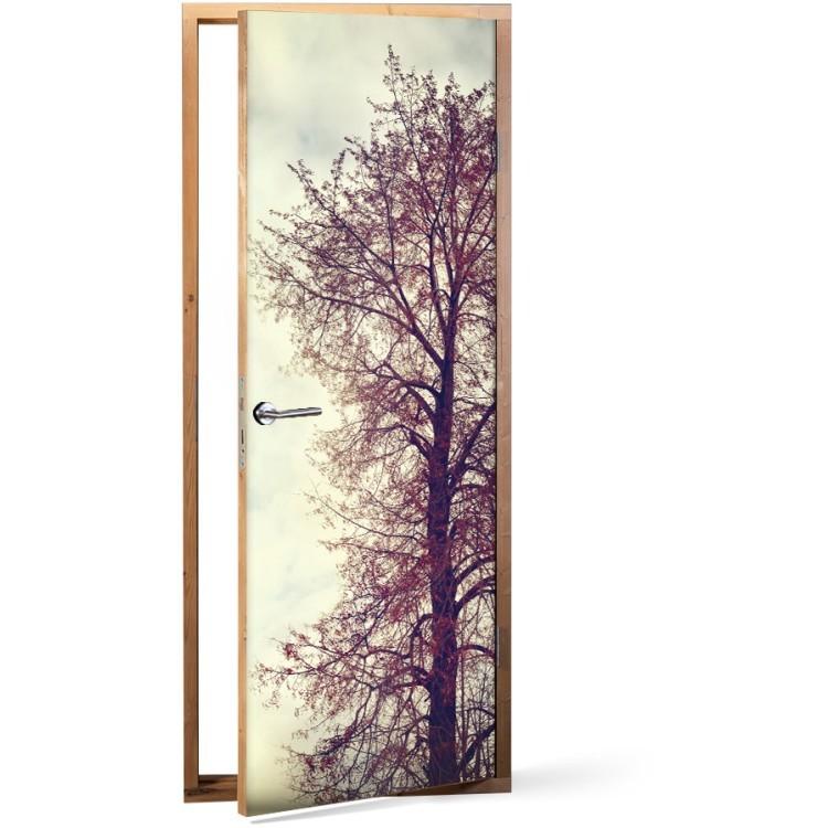 Αυτοκόλλητο Πόρτας Κλαδιά Δέντρου