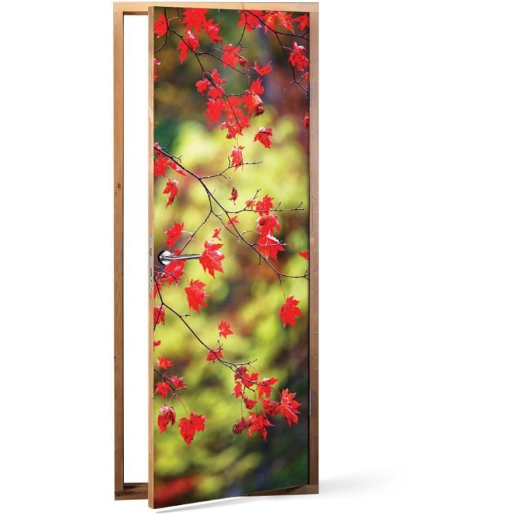 Αυτοκόλλητο Πόρτας Φθινοπωρινά φύλλα