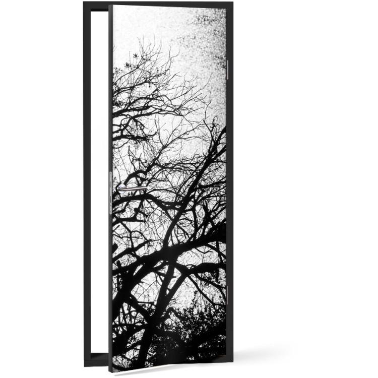 Αυτοκόλλητο Πόρτας Ασπρόμαυρη φύση