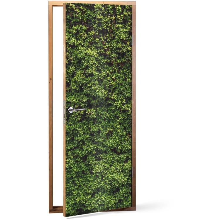 Αυτοκόλλητο Πόρτας Πράσινη βρύα