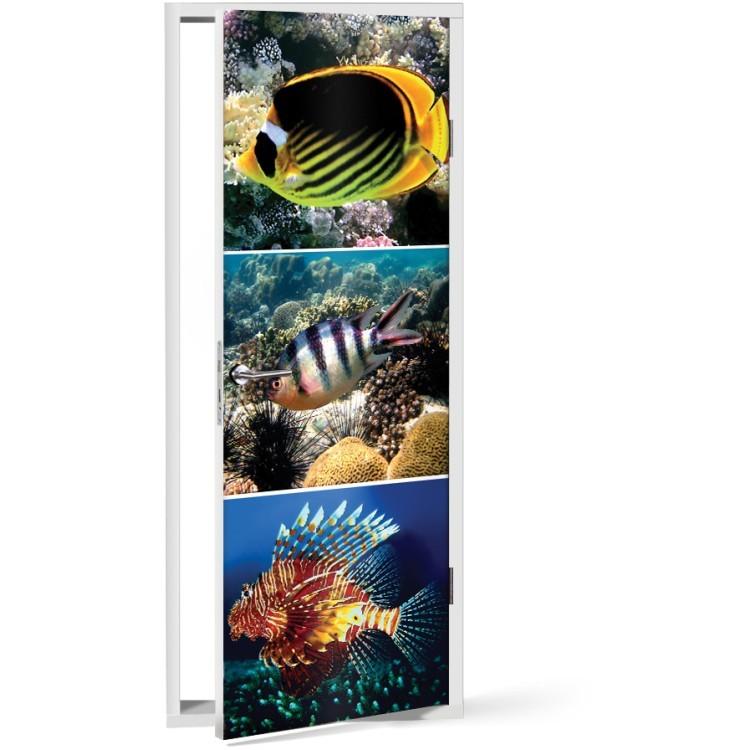Αυτοκόλλητο Πόρτας Ψάρια