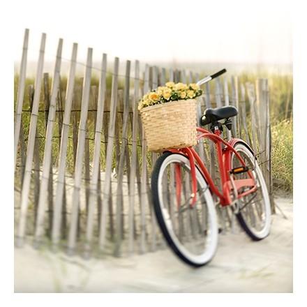 Κόκκινο ποδήλατο εποχής