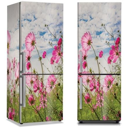 Ροζ λουλούδια στο λιβάδι