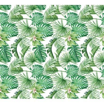 Πράσσινα Φύλλα