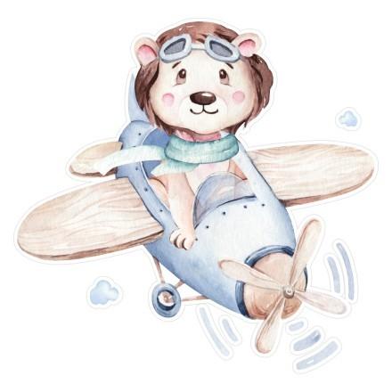 Αρκούδα πιλότος