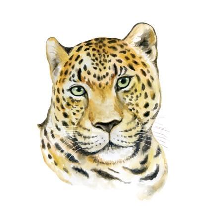 Μικρός τίγρης