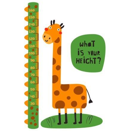 Giraffe...your height?