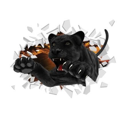 Μαύρος πάνθηρας σπάει τοίχο