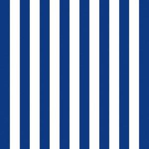 NAVY ΧΑΡΤΟΠΕΤΣΕΤΑ ΡΙΓΕ BLUE NAVY 33x33cm, ΧΑΡΤΟΠΕΤΣΕΤΕΣ, Maison
