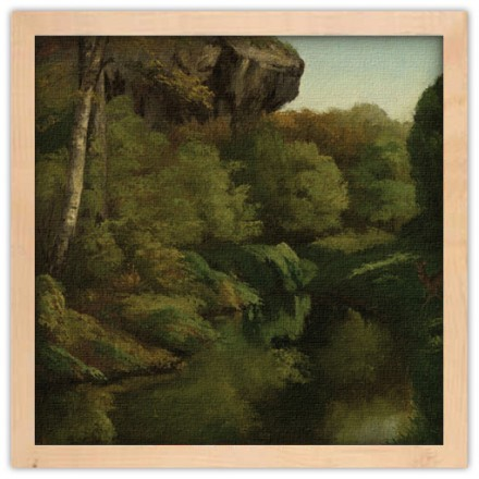 View in the Forest of Fontainebleau