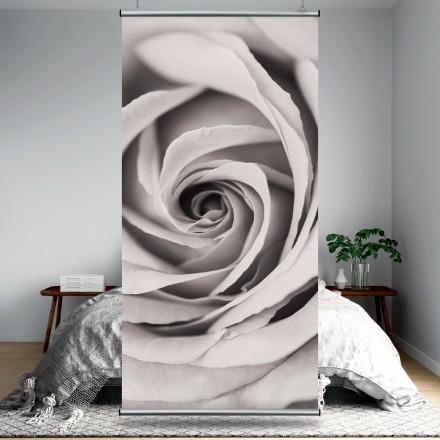 Γκρίζο τριαντάφυλλο