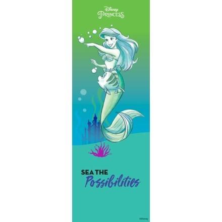 Ariel, Princess