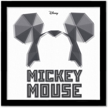Mickey Mouse, kleidoscope!