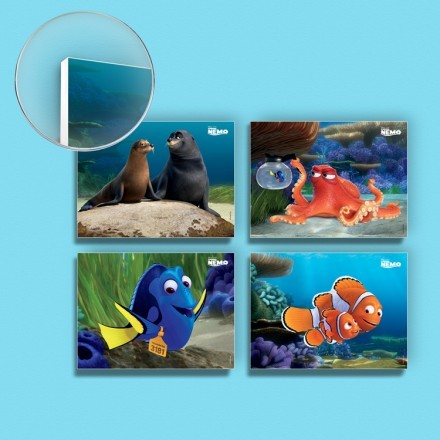 Finding Nemo, Friends and Family