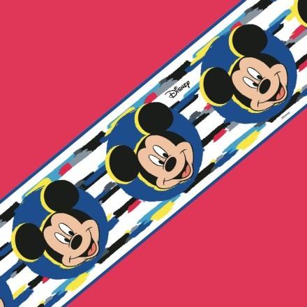 Ο Mickey Mouse!!