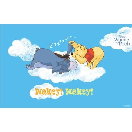 Wakey Wakey, Winnie