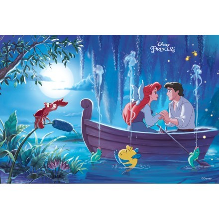 Η πριγκίπισσα Ariel και ο πρίγκιπας Έρικ