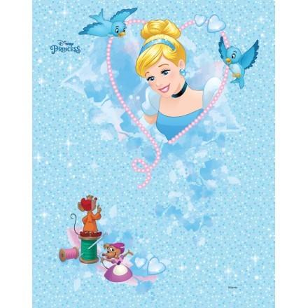 Cinderella, Little Princess