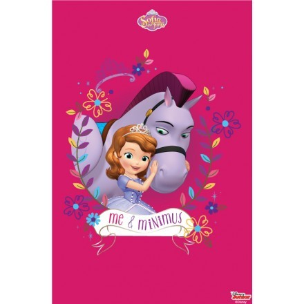 Me and Minimus , Sofia the First!