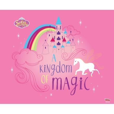 Kingdom of Magic, Sofia the First