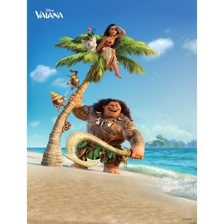 Η Vaiana και ο Maui!