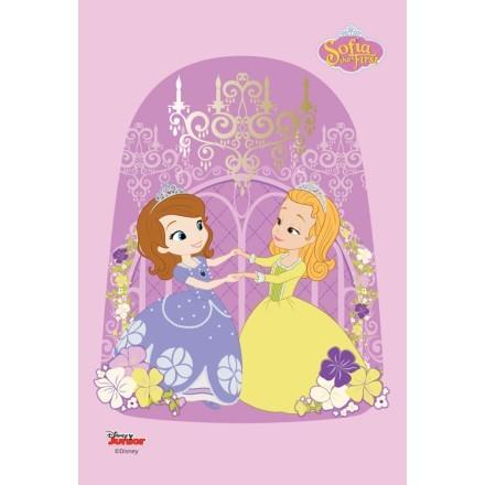 Η Πριγκίπισσα Σοφία και η πριγκίπισσα Άμπερ