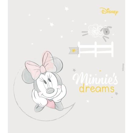 Minnies dreams