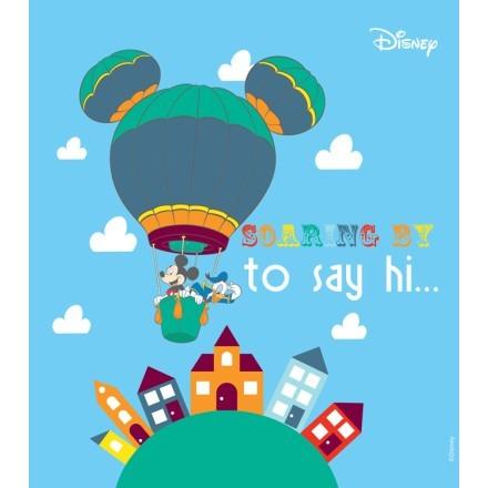 Soaring to say hi! Mickey and Donald