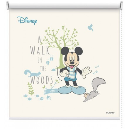 Walk in the woods, Mickey Mouse