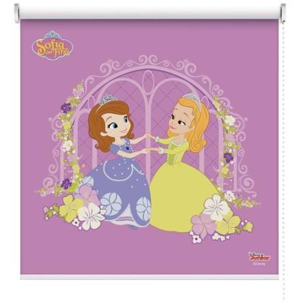 Η πριγκίπισσα Σοφία και η αγαπημένη φίλη της