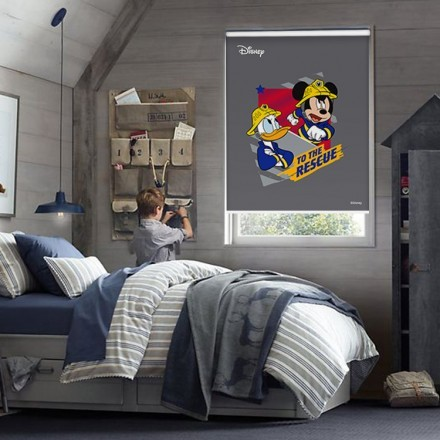 To the rescue, Donald Duck & Mickey Mouse