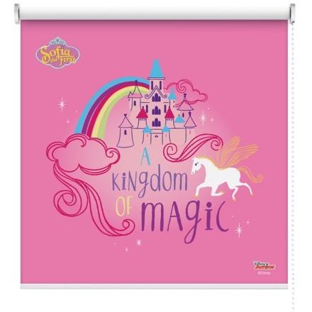 Ένα μαγικό βασίλειο, Sofia The First
