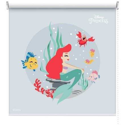 Ariel, Princess!!!